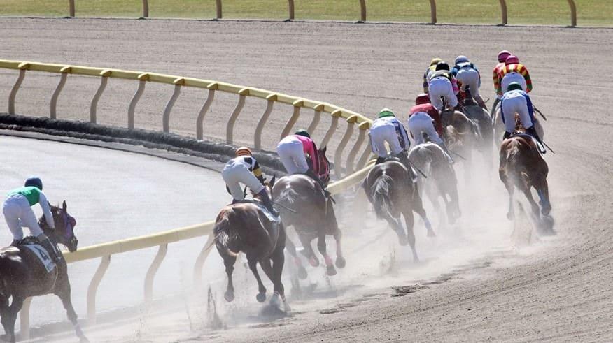 競馬 指数 理論